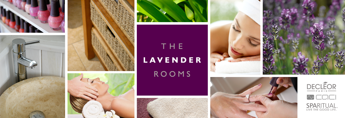 Home The Lavender Rooms